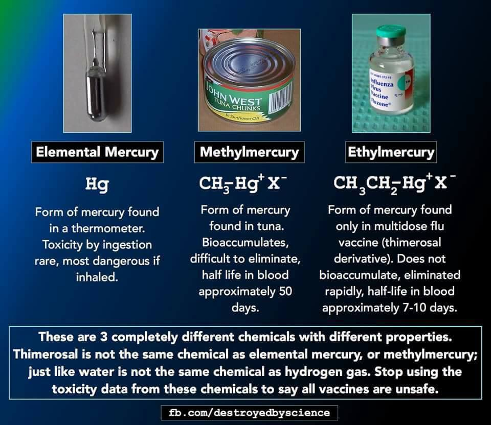 autism mercury containing vaccines Thimerosal contains ethylmercury, which is cleared from the human body more   in vaccines does not contribute to the development of autism.